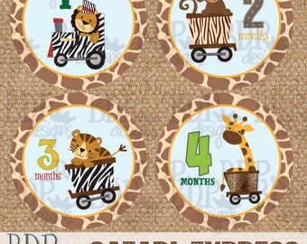 "Safari Express Monthly Onesize Stickers - 4"" diameter - INSTANT DOWNLOAD"