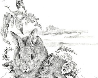 Bunny Rabbit Birds prints Black White Children's Prints Animal sketches pencil drawings framable art Nature prints Wildlife Christian prints