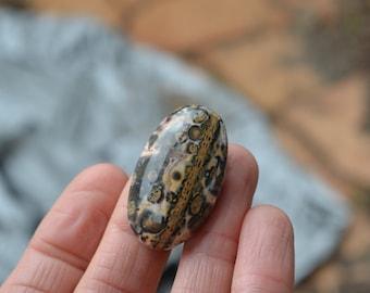 Leopard Skin Jasper. Wide Oval shape stone. Hand cut cabochon. Large jasper. Black yellow green white.