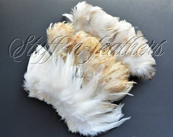 Natural rooster feathers assortment, bulk feathers, ivory beige ginger mix real feathers for crafts, millinery, jewelry 3-4.5 in long / FS22