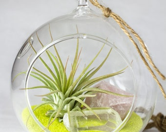 Hanging Terrarium Kit || Air Plant + Rose Quartz + Clear Quartz + Yellow Sand ||
