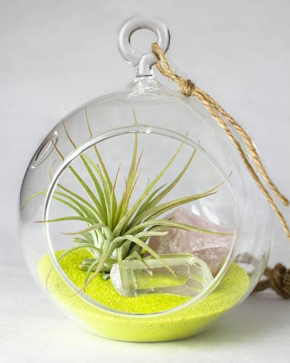 Hanging Terrarium Kit || Air Plant + Rose Quartz + Clear Quartz + Yellow Sand ||