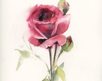 Rose Original Watercolor Painting, Rose Watercolour Art