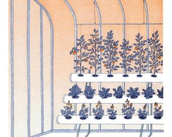 Greenhouse risograph art print