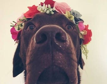 Dog Floral Halo - Animal Flower Crown - Dog Accessories - Puppy Crown - Dog Flower Crown Item