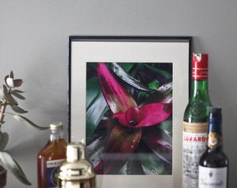 Flora No. 3 | 8x10 Giclee Print