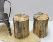 Stump Table Nude Tree Trunk Stool Seat