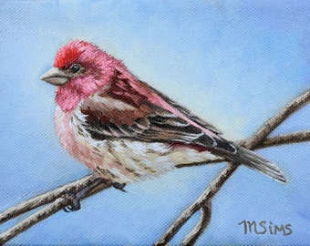 Purple Finch - bird painting - Open edition print