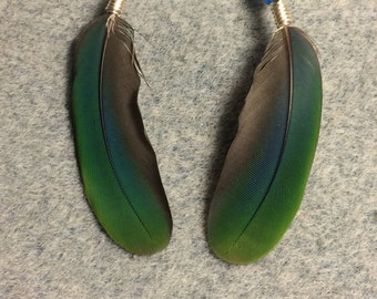 Teal and green mini macaw feather earrings adorned with small blue, green, and turquoise Czech glass beads.