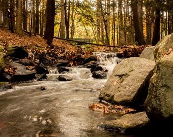Mine Falls Stream