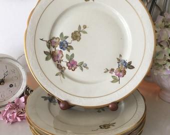 vintage kpm 10 bone china dinner plates creampinkblue - China Dinner Plates