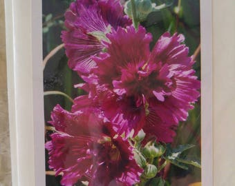 Blank card with flower photo -- 4x6