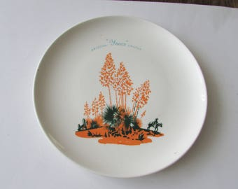 "Vintage Blakely Yucca Cactus Arizona 10"" Dinner Plate Dinnerware"