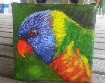 Bird Painting - Original Painting - Rainbow Lorikeet Painting - Bird Art - Lorikeet - Wildlife Art - Small Painting - Australian Art