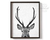 Deer print, Black and white print, PRINTABLE art, Deer photo, Deer art, Animals, Animal photography prints, Wildlife art, Antlers print