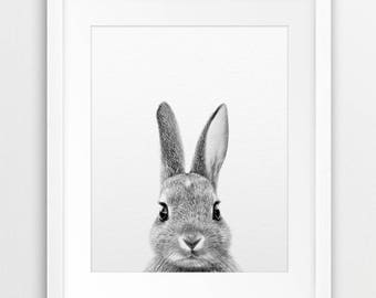 Rabbit Print, Bunny Photo, Black & White Animal, Cute Baby Animal, Woodlands Animal, Modern Wall Art, Nursery Decor, Kids Room Printable Art