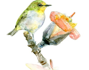 Japanese White-eye watercolor painting - bird watercolor painting - 5x7 inch print - 0084