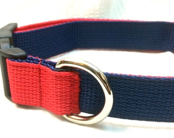 Two Tone Custom Dog Collar or Step In Harness with Personalized Options