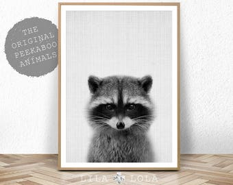 Racoon Print, Nursery Decor, Baby Shower, Animal Photo, Woodland Animal Wall Art, Digital Download, Large Printable Poster, Black and White