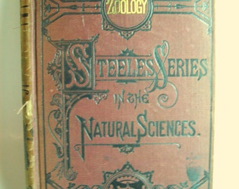 Vintage Book Zoology Steeles Series in the Natural Sciences
