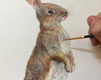 8.5x11 Watercolor Rabbit / Bunny / Hare on Glossy Cover Paper