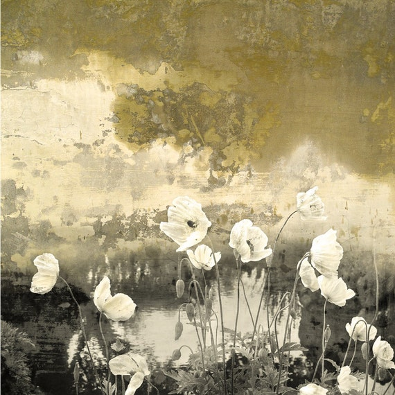 Poppies Remembered,limited edition,golden color, garden flowers,white poppies,wall art, home decor,elegant art,art for interiors,photo art