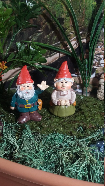 Gnome In Garden: Fairy Garden Miniature Garden Gnomes For Your Fairy Garden Ma