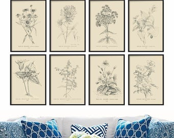 Farmhouse Decor - Botanical Print Set of 8 - Vintage Prints - Wall Art - Art Print - Wall Hanging - Home Decor - Prints - Gift for Her - Art