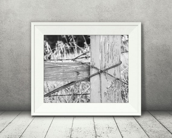 Barbed Wire Fence Photograph - Fine Art Print - Black & White Photography - Wall Art - Wall Decor -  Farm Pictures - Farm House Decor