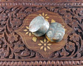 25mm (1 inch) Mexican Birdseye Jasper Stone Plugs. 14mm wearable surface.