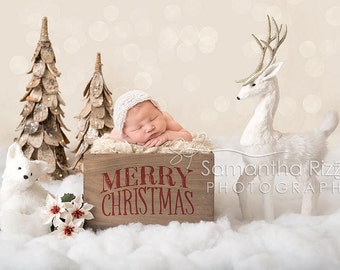 Digital Newborn Photography Background - Winter Snow Crate Christmas Backdrop (Set of 2)