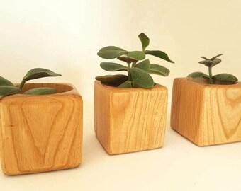 Flower Pots,Wood Succulent Planter,Succulent Planters,Modern Planter,Modern Succulent Pot,Succulent Planter Gifts,Plant Pot