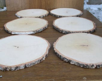 "11 inch Birch Slice,Large Wood Slices, 11"" wood slices, large wood slabs, wood platter, Rustic Wedding Decor, Cake Stand,Wedding Centerpiece"