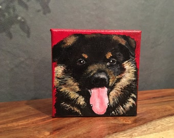 Hand painted custom pet portraits on canvas