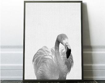 Flamingo Wall Decor, Tropical Print, Minimalist Tropical Art Print, Flamingo Nature Print, Black and White, Grey Photography ,Flamingo Photo