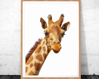 Safari Nursery Wall Art, African Animal, Giraffe Photography, Nursery Poster, Safari Art Decor, Giraffe Wall Art, Safari Animal Prints