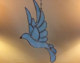 Baby Blue Dove