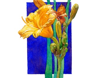Lilies Y series, contemporary watercolor art painting giclee print collectables, greens, yellows, blues, Phyllis Nathans, perfect gifts