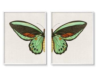 Modern, Bohemian Decor, Wall Art Set, of 2, Butterfly Wings, Butterfly Prints, Diptych, Instant Download, Printable Art, Birdwing, Butterfly