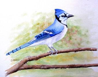 Blue Jay painting original watercolor bird painting 6x8