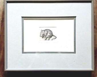 "Marsha Howe etching ""mousikin"" 144/150"