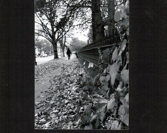Autumn Leaves, Utica, Central New York, CNY, fence, figure, leaves, fall, autumn, greyscale, photograph, print