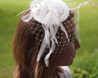 Fascinator veil and feathers