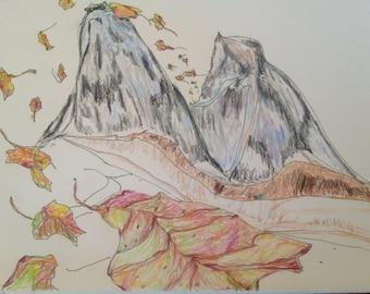 Fall Awakening