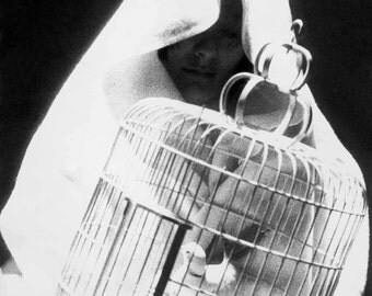 A very cool gift is a fine art print of the black and white image of 'woman with dove' from 'The Shadow Line (1976)