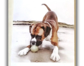 Beach Boxer Dog blank greeting card