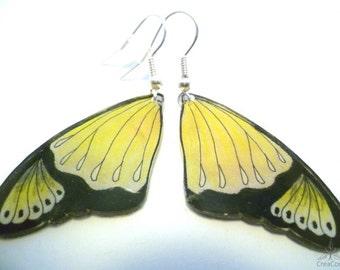 Earrings Butterfly wing yellow/black, two-tone drawn free-hand, shrink plastic earrings acrylic shrink film, flat light