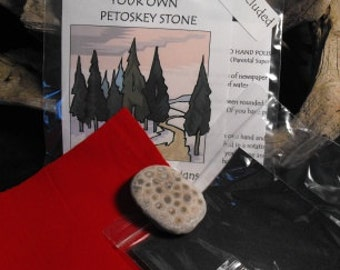 Petoskey Stone Polishing Kit