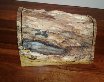 Spalted box with live edge very natural and rustic