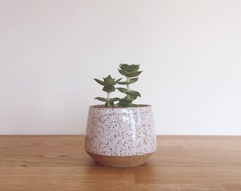 Wheel thrown ceramic planter, succulent planter
